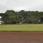 World Famous Kamariny Track in Iten