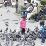 Some kids just aren't afraid of a few pigeons.  ;)